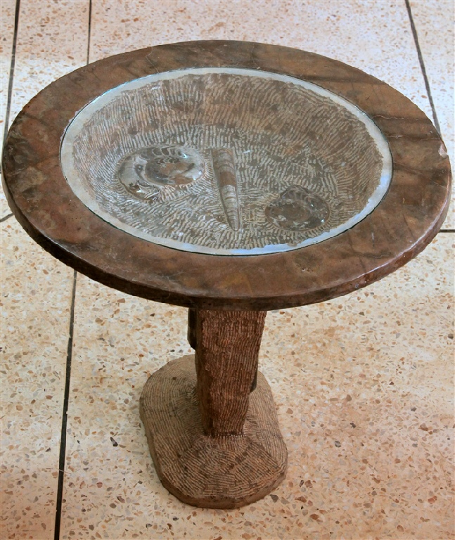 Fossils Erfoud In Morocco Marble Quality S Achour Table 14